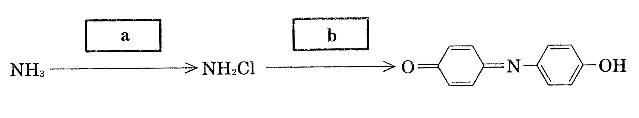 酸 違い バルプロ ab